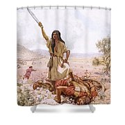 David And Goliath Shower Curtain by William Brassey Hole