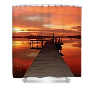 Dawn Of New Year Shower Curtain by Karen Wiles