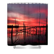 Dawns Preview Shower Curtain