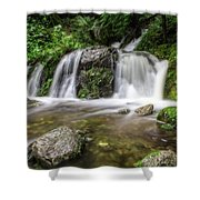 Day 1000 - Lower Forest Glen Falls Shower Curtain