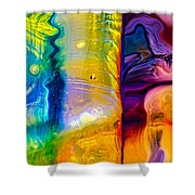 Day And Night Shower Curtain