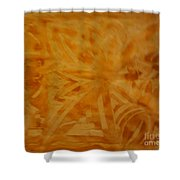 Night And Day 003 Shower Curtain