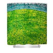 Daybreak Original Painting Shower Curtain