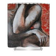 Daydreamer - Nudes Gallery Shower Curtain
