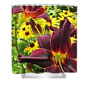 Daylilies And Rudbeckia Shower Curtain