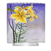Daylilies Shower Curtain