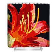 Daylily Flame Shower Curtain