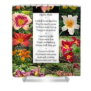 Daylily Math Shower Curtain