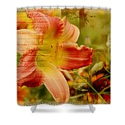 Daylily Memories Shower Curtain