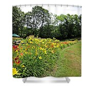 Daylily River Shower Curtain