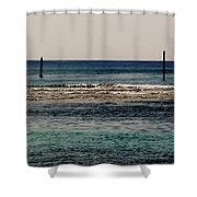 Daymarks Shower Curtain