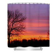 Day's End Elm Shower Curtain