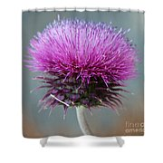 Dazzling Thistle Beauty Shower Curtain