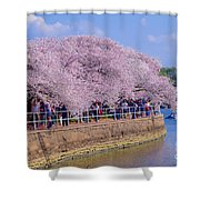Dc Blossom Visitors Shower Curtain