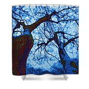 Dc Trees Map Shower Curtain