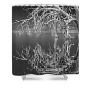 Dead Arch Black And White Shower Curtain