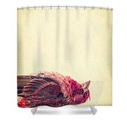Dead Shower Curtain