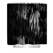 Dead Fronds Shower Curtain