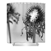 Dead Of Winter Shower Curtain
