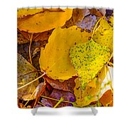 Dead Poplar Leaves Shower Curtain