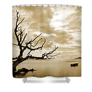 Dead Tree And Sea Shower Curtain