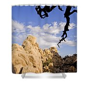 Dead Tree Limb Hanging Over Rocky Landscape In The Mojave Desert Shower Curtain