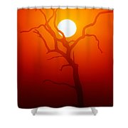 Dead Tree Silhouette And Glowing Sun Shower Curtain