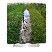 Dead Treeflection Shower Curtain