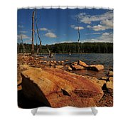 Dead Trees And Rocks Shower Curtain