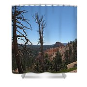 Dead Trees At Bryce Canyon Shower Curtain