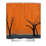 Dead Trees By Red Sand Dunes, Dead Shower Curtain
