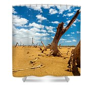 Dead Trees In A Desert Wasteland Shower Curtain