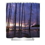 Dead Trees In Lower Geyser Basin Shower Curtain
