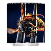 Dead Wasp On A Fork Shower Curtain