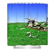 Dead Wood Shower Curtain