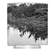 Deadfall Reflection In Black And White Shower Curtain