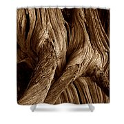 Deadwood Shower Curtain