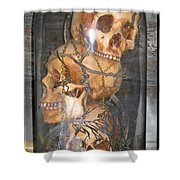 Death On Display Shower Curtain