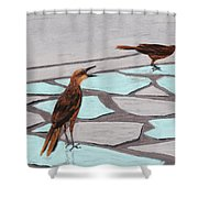 Death Valley Birds Shower Curtain