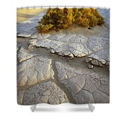Death Valley Mudflat Shower Curtain