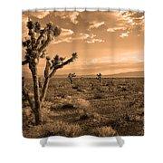 Death Valley Solitude Shower Curtain