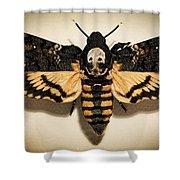 Deaths Head Hawk Moth Framed Version Shower Curtain