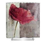Decor Poppy Shower Curtain by Priska Wettstein