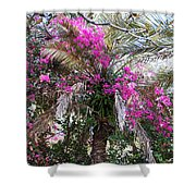 Decorated Palm Shower Curtain