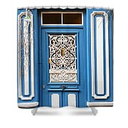 Decorative Door Shower Curtain