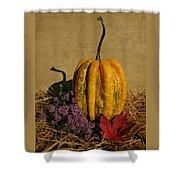 Decorative Gourd  Shower Curtain