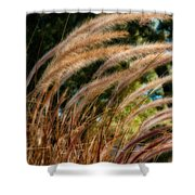 Decorative Grass Wind Autumn And Orton Shower Curtain
