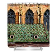 Decorative Roof Shower Curtain