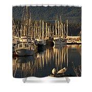 Deep Bay Shower Curtain by Randy Hall