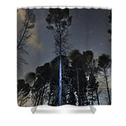 Deep Forest At Night Shower Curtain